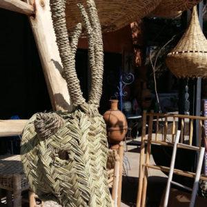 Jolie tête d'antilope feuilles deucalyptus